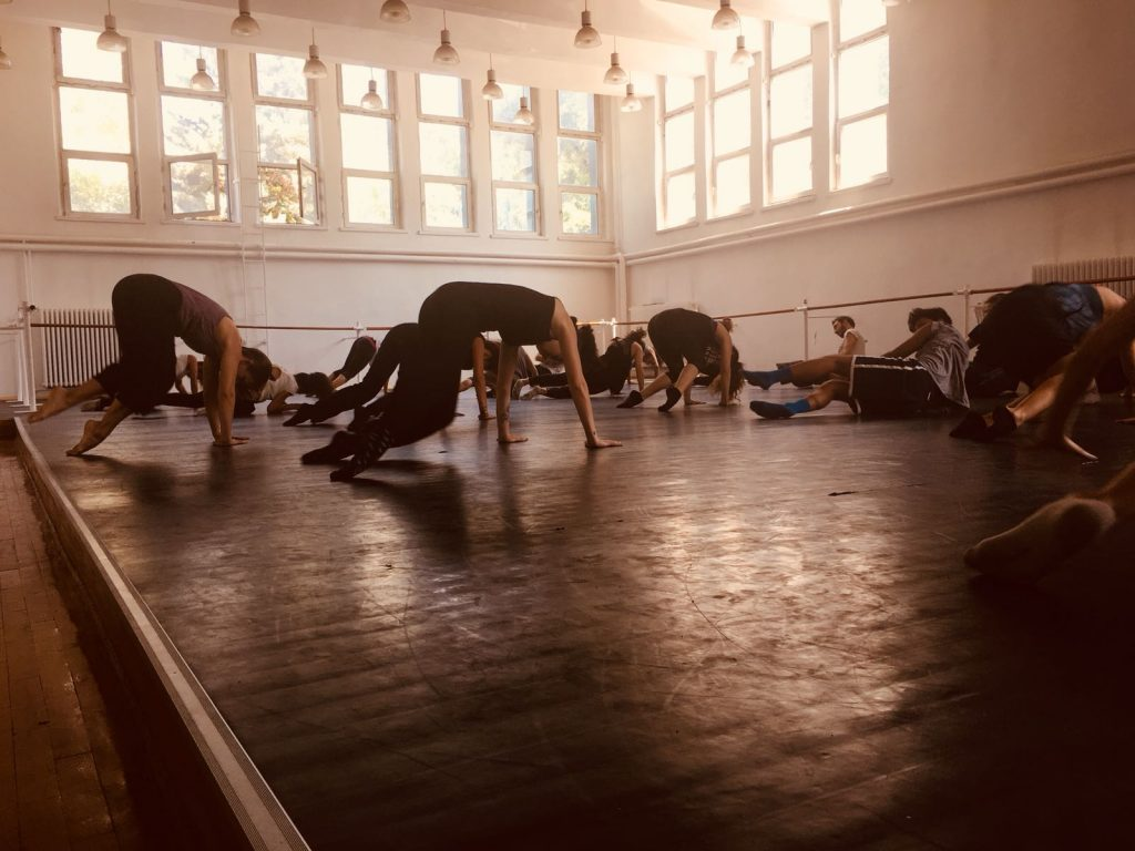 Choreographic Residency at Hacettepe University/Ankara State Conservatory (Ankara, Turkey 2018)